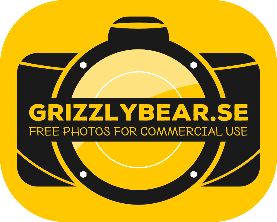 Grizzlybear logo header